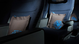 British Airways World Traveller Plus (premium economy)