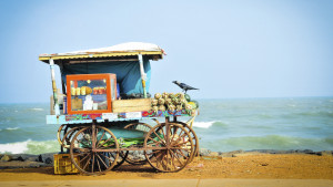 Pondicherry fruit cart