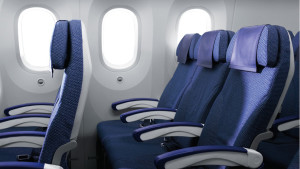 All Nippon Airways Boeing 787-8 Dreamliner Economy Class