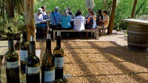Wine tasting at Obsidian Wines