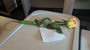 Aeroflot rose