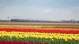 Eurostar-Amsterdam-