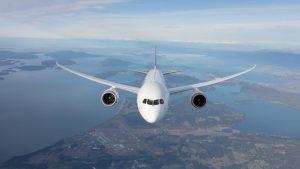 Qantas Dreamliner - Quokka aircraft