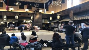 Japan National Tourism Organisation announces Sumo experience for visitors