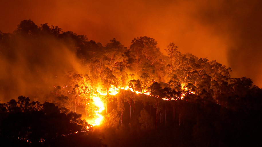 Airlines offering assistance to Australia as bushfires continue to rage – Business Traveller