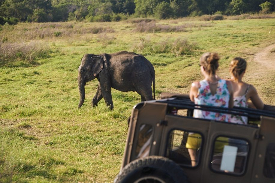 Sri Lanka expects two million visitors worldwide in 2019